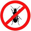 Инсектициды (средства от насекомых)